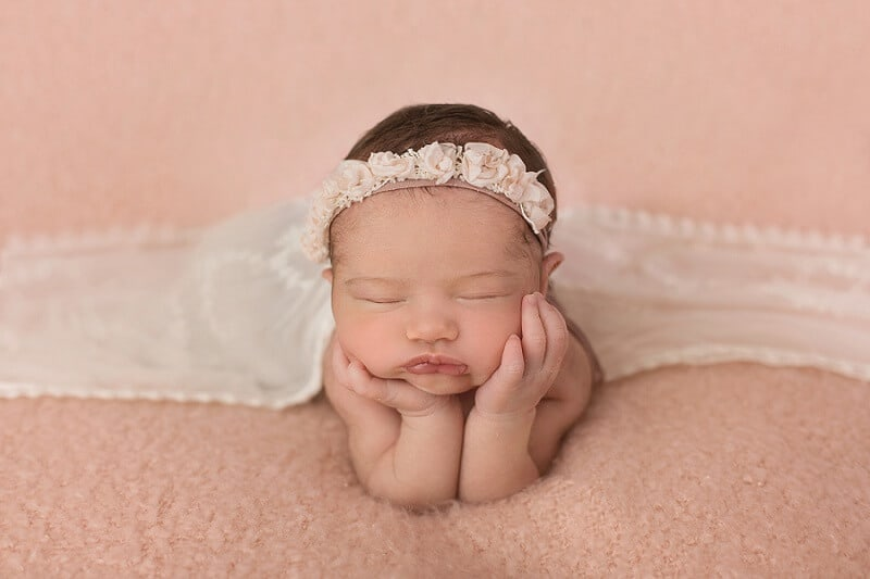 willard ohio newborn photographer