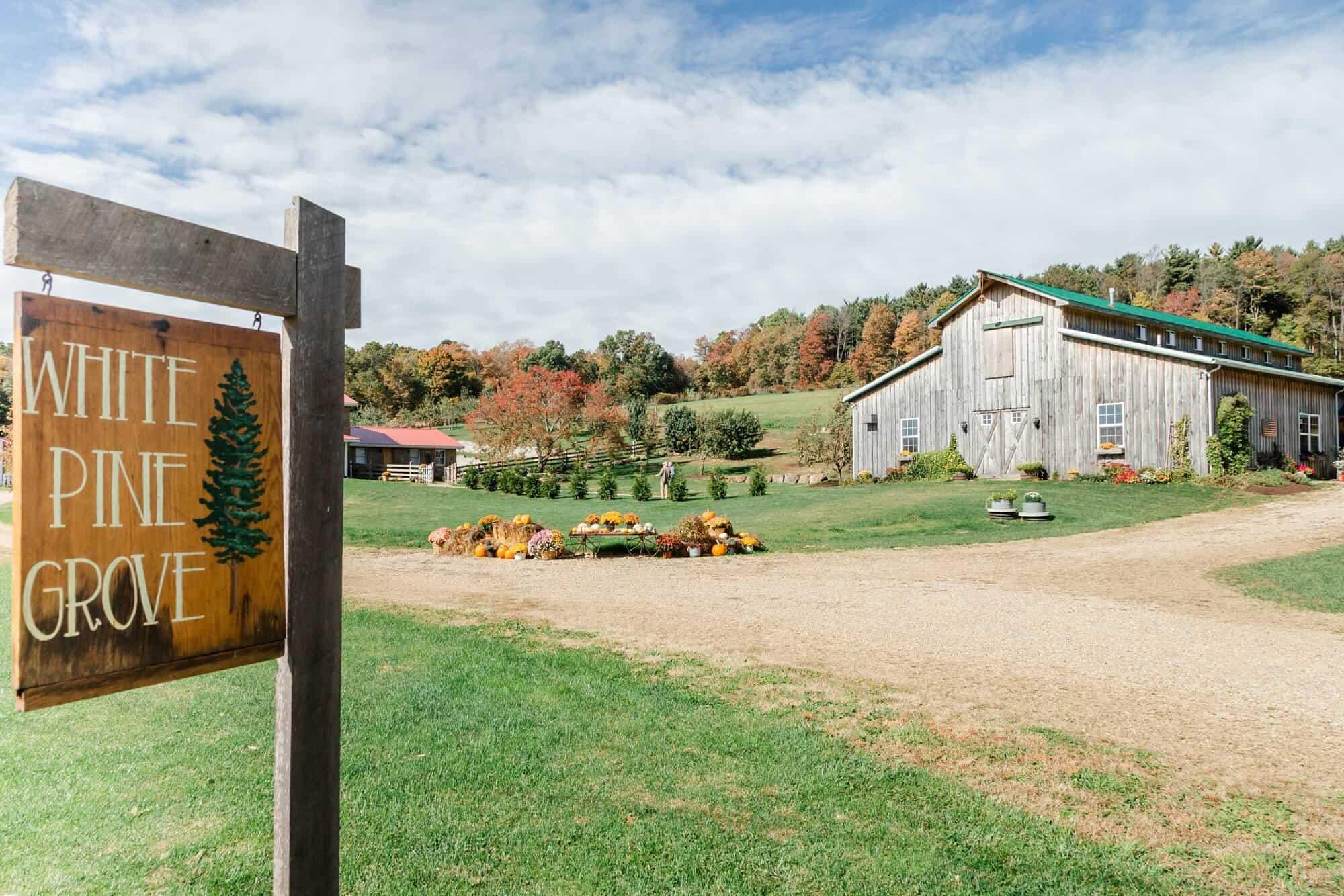 white pine grove wedding perrysville ohio