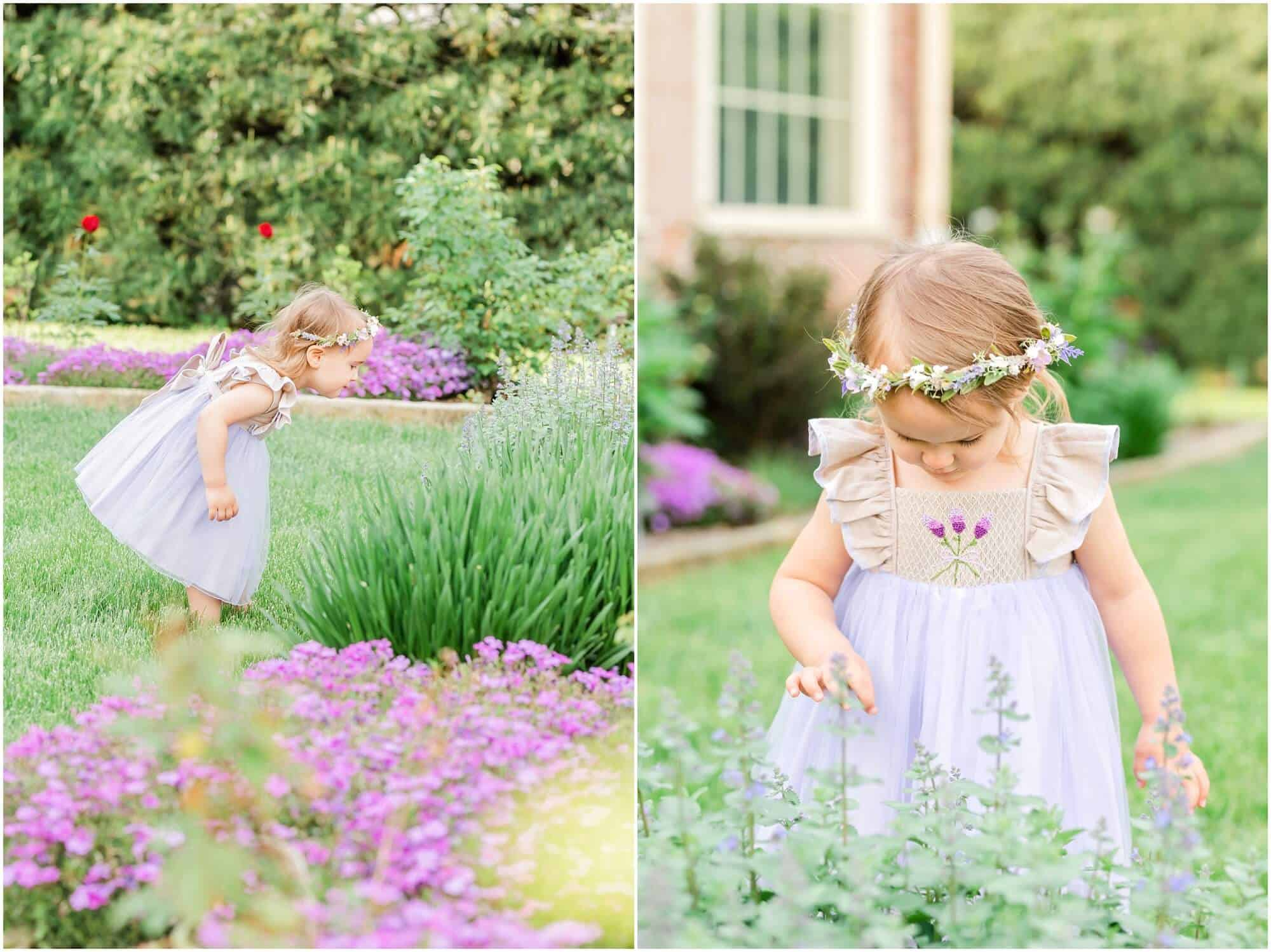 purple flowers at kingwood center mansfield ohio photographer