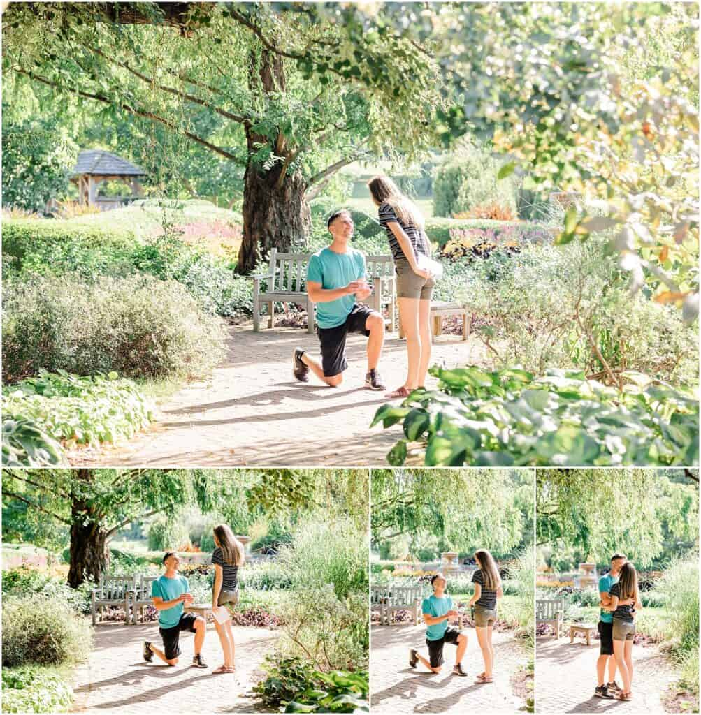 kingwood center surprise proposal by tiffany murray