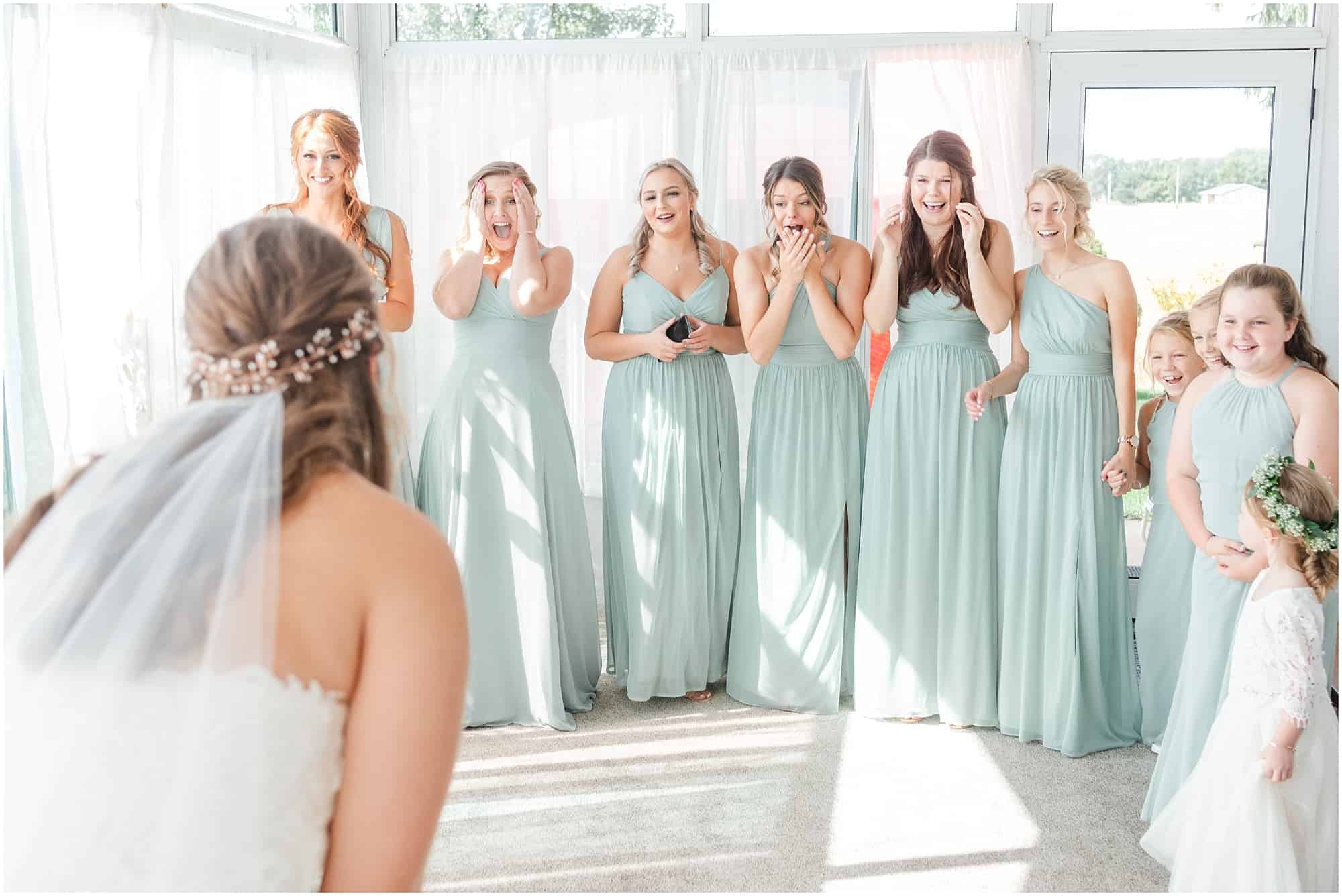 norwalk ohio wedding gown reveal